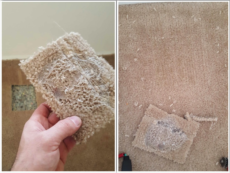 professional carpet cleaning stretching repair Richmond VA
