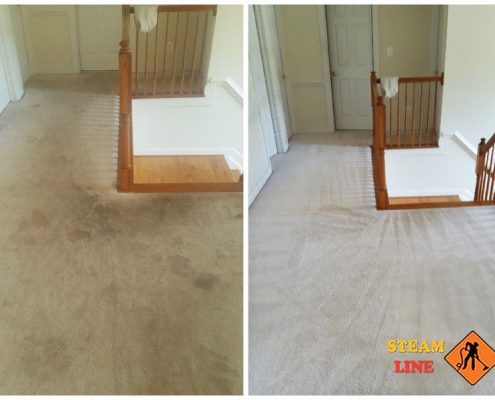 carpet cleaning in Glen Allen VA, professional and affordable