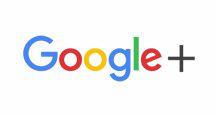 SteamLine carpet cleaning restoration on google