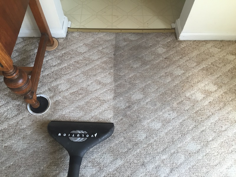 expert carpet cleaning in Richmond area. Professional results