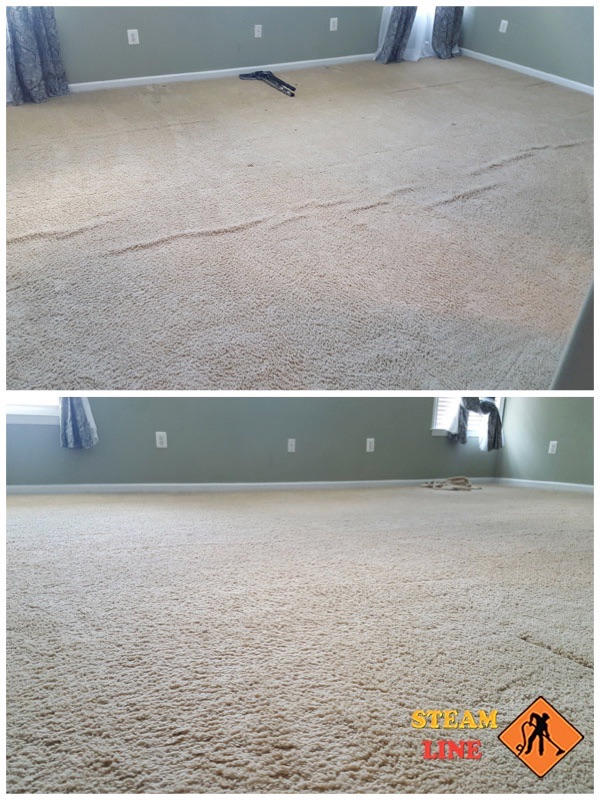 professional carpet cleaning Glen Allen VA