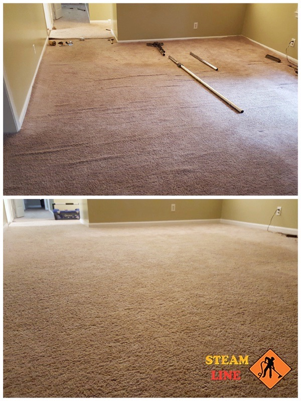 expert carpet stretching Midlothian